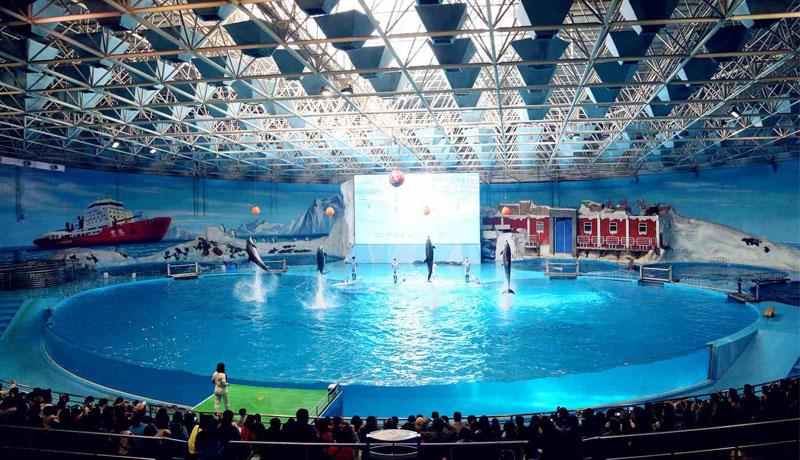 青岛极地海洋世界双馆(含极地馆+欢乐剧场)