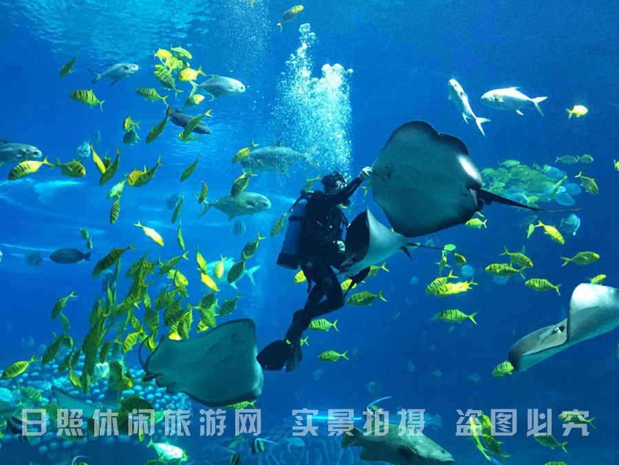 <a href=http://m.yujiale58.com target=_blank class=infotextkey>日照渔家乐</a>